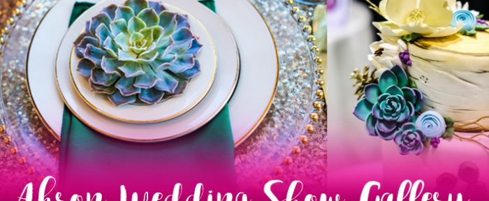 Akron Wedding Show Gallery