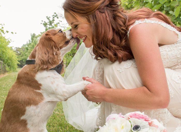 Pets in Wedding | Sabrina Hall Photography | As seen on TodaysBride.com