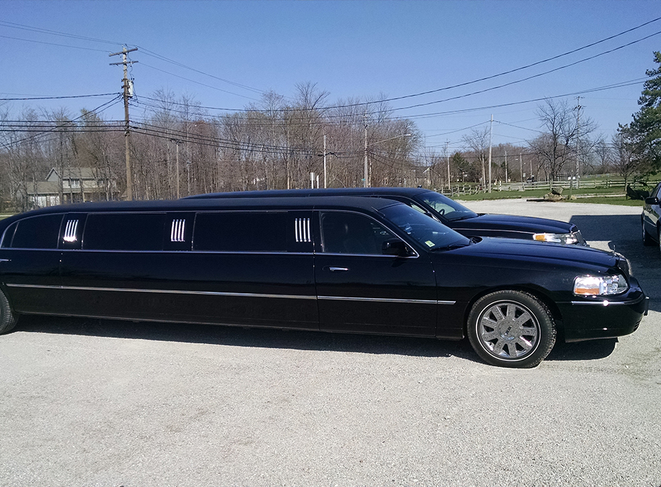 Lake Erie Limo | As Seen On TodaysBride.com