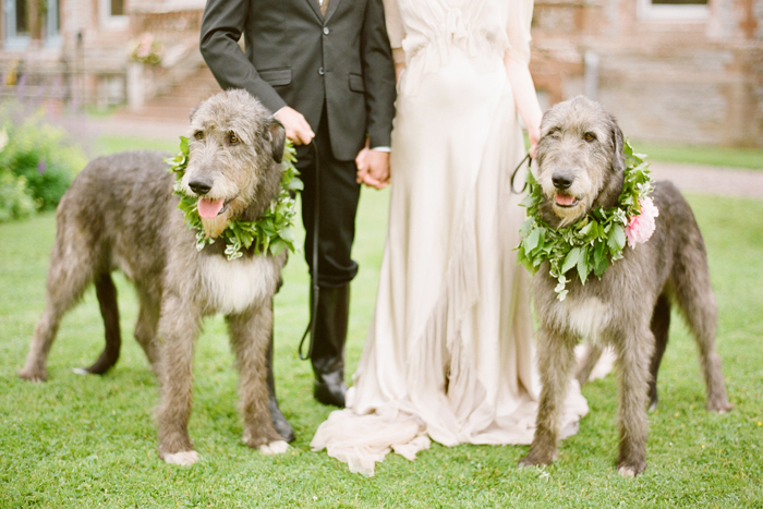 Pets in Wedding | KT Merry Photography | As seen on TodaysBride.com