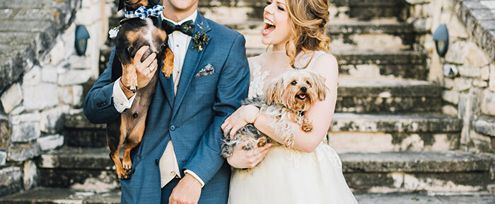 Party Animals: Incorporating Pets Into Your Wedding Ceremony